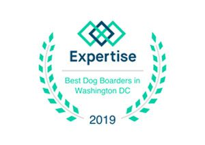 Expertise 2019 - Best Dog Boarding in Washington, DC