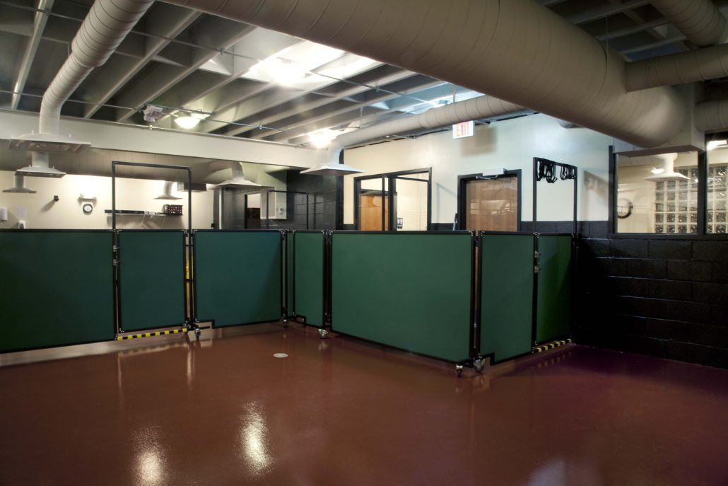 The Board Hound Shirlington: Floor